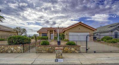 Santa Teresa Single Family Home For Sale: 253 Bay Club Drive