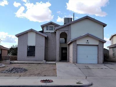 Single Family Home For Sale: 12141 Jose Cisneros Drive