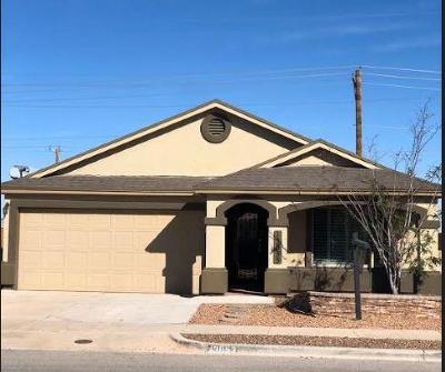 Single Family Home For Sale: 13053 Lost Willow