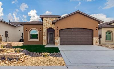Horizon City Single Family Home For Sale: 13617 Matfen Avenue