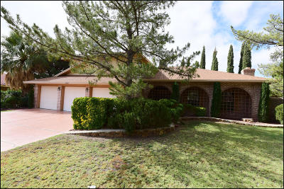 El Paso Single Family Home For Sale: 6000 Camino Alegre Drive
