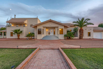 Single Family Home For Sale: 990 Vereda Del Valle Avenue