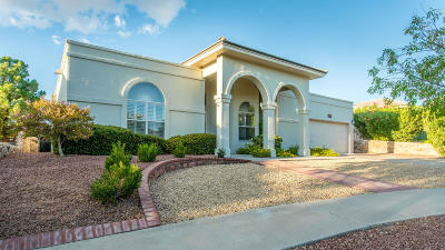 Single Family Home For Sale: 1333 Desert Canyon Drive