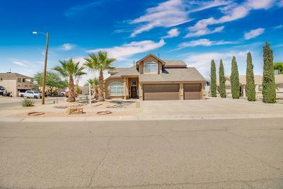 Horizon City Single Family Home For Sale: 13801 Ryderwood