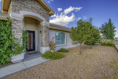 Horizon City Single Family Home For Sale: 801 Desert Silver Drive