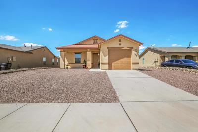 Horizon City Single Family Home For Sale: 809 Nuevo Desierto Drive