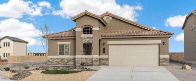 Horizon City Single Family Home For Sale: 13912 Flora Vista Avenue