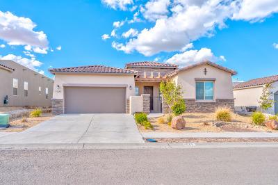 Santa Teresa Single Family Home For Sale: 1085 Iron Hill Avenue