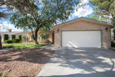 Horizon City Single Family Home For Sale: 15323 Woodhill Court