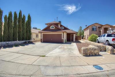 Socorro Single Family Home For Sale: 10408 Ethyl Hart Street
