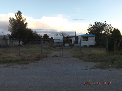 Single Family Home For Sale: 853 Desert Lane