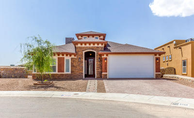 El Paso Single Family Home For Sale: 3089 Coyote View Place