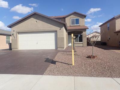 El Paso Rental For Rent: 2608 Chris Evert