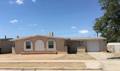 El Paso Rental For Rent: 3047 Yarwood Drive