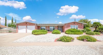 Single Family Home For Sale: 10217 Buckwood Drive
