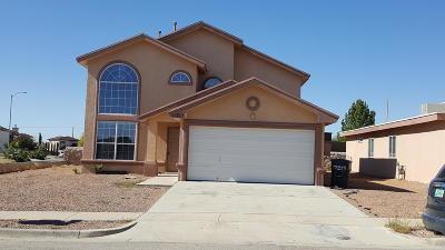 Horizon City Single Family Home For Sale: 13713 Paseo De Vida Drive
