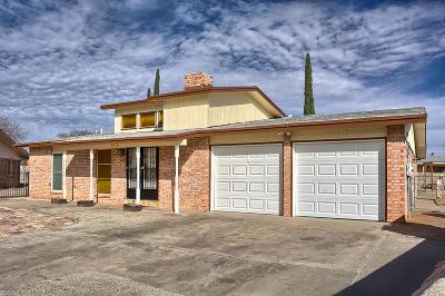 El Paso Single Family Home For Sale: 5113 Temple Court