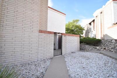 El Paso Rental For Rent: 6201 Escondido Drive #10A