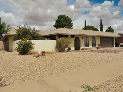 Horizon City Single Family Home For Sale: 3707 Roslyn Drive