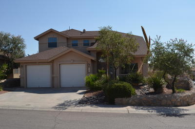 El Paso Single Family Home For Sale: 1500 Snowy Plover