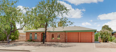 El Paso Single Family Home For Sale: 8620 Grover Drive