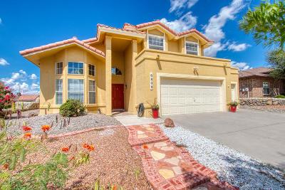 El Paso TX Single Family Home For Sale: $238,333