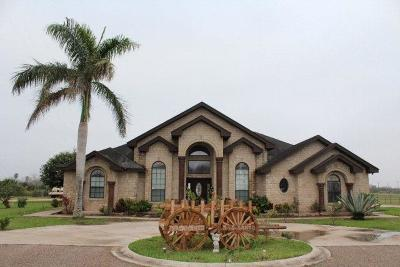 Weslaco Single Family Home For Sale: 3303 S Mile 6 1/2