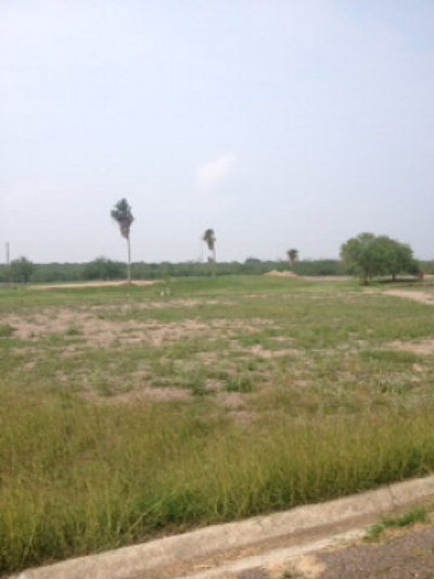 Residential Lots & Land For Sale: 809 Delta Drive