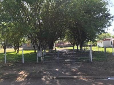 Edinburg Single Family Home For Sale: 6709 Calle de America Road