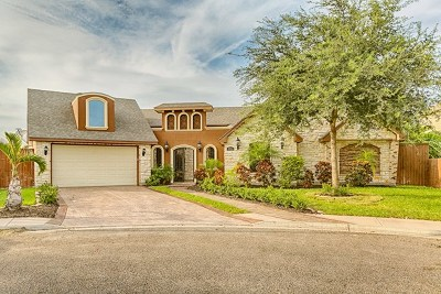 McAllen Single Family Home For Sale: 3904 Yellowhammer Avenue