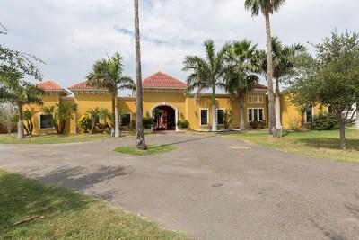 Mission Single Family Home For Sale: 2507 E Mile 5