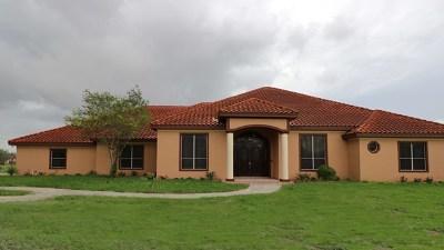 Alamo Single Family Home For Sale: 700 S Cesar Chavez Road