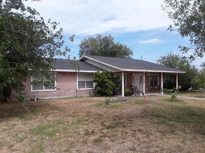 Weslaco Single Family Home For Sale: 2921 Texas Blvd