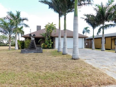 Edinburg Single Family Home For Sale: 3906 Flores Street