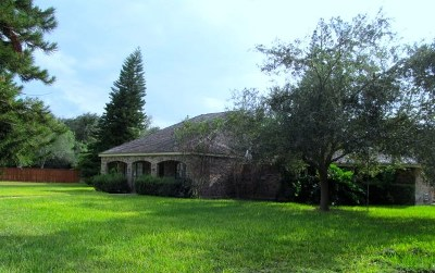 Weslaco Single Family Home For Sale: 1814 Forest Lane