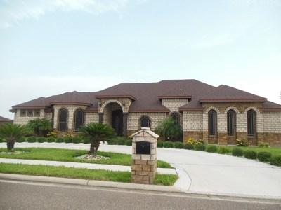 Alamo Single Family Home For Sale: 1415 Vida Entera