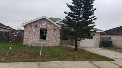 Harlingen Single Family Home For Sale: 614 T Street
