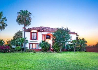 McAllen Single Family Home For Sale: 6001 Ware Road