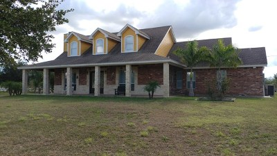 Edinburg Single Family Home For Sale: 106 Los Venados Drive