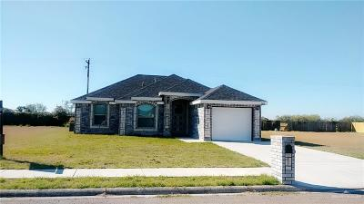 Weslaco Single Family Home For Sale: 2408 Lupita Street