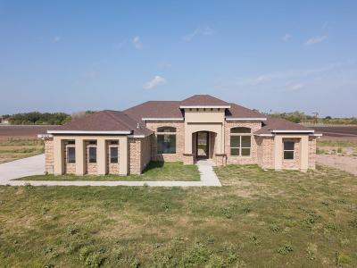 Harlingen Single Family Home For Sale: 2014 Thacker Lane
