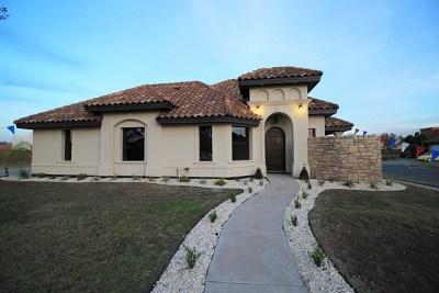 McAllen TX Single Family Home For Sale: $230,000
