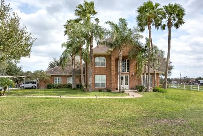 McAllen Single Family Home For Sale: 9908 Bentsen Road