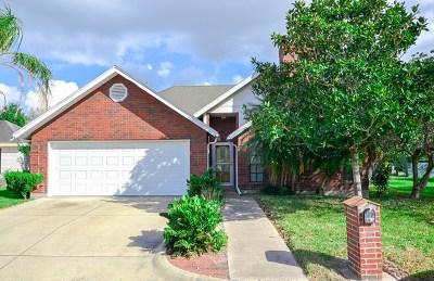 Harlingen Single Family Home For Sale: 2810 Sterling Avenue