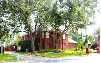 McAllen Single Family Home For Sale: 7004 Cynthia Street