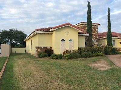 Weslaco Single Family Home For Sale: 1324 . Buena Suerte Street