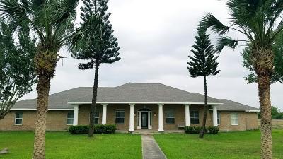 Harlingen Single Family Home For Sale: 28717 Bass Blvd