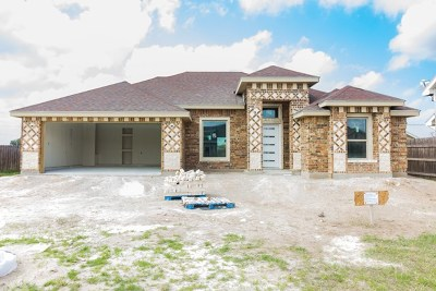 Weslaco Single Family Home For Sale: 2420 Flag Stone Terrace