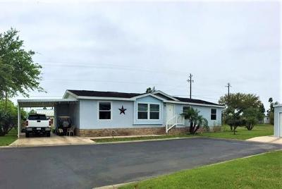 Mercedes Single Family Home For Sale: 3058 Guadalajara Street