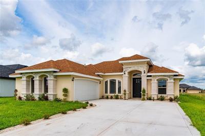 Weslaco Single Family Home For Sale: 3527 Pecan Grove Drive